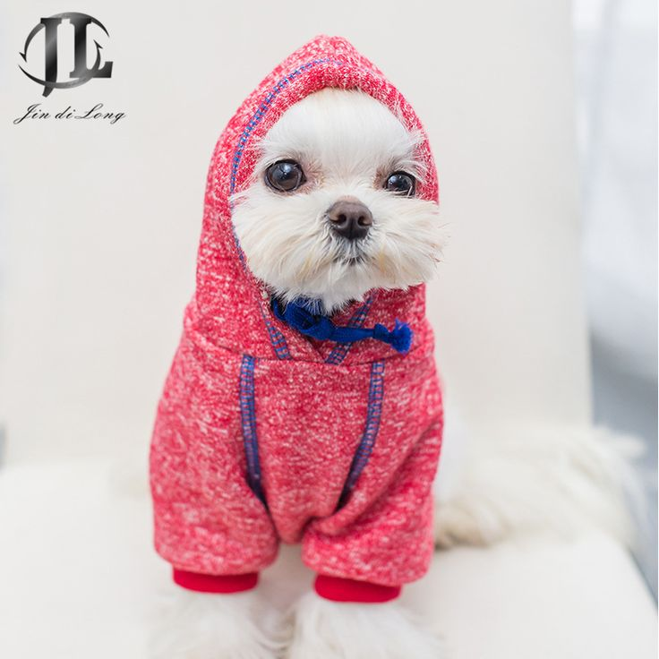 The 25+ best Small dog clothes ideas on Pinterest | Pet ...