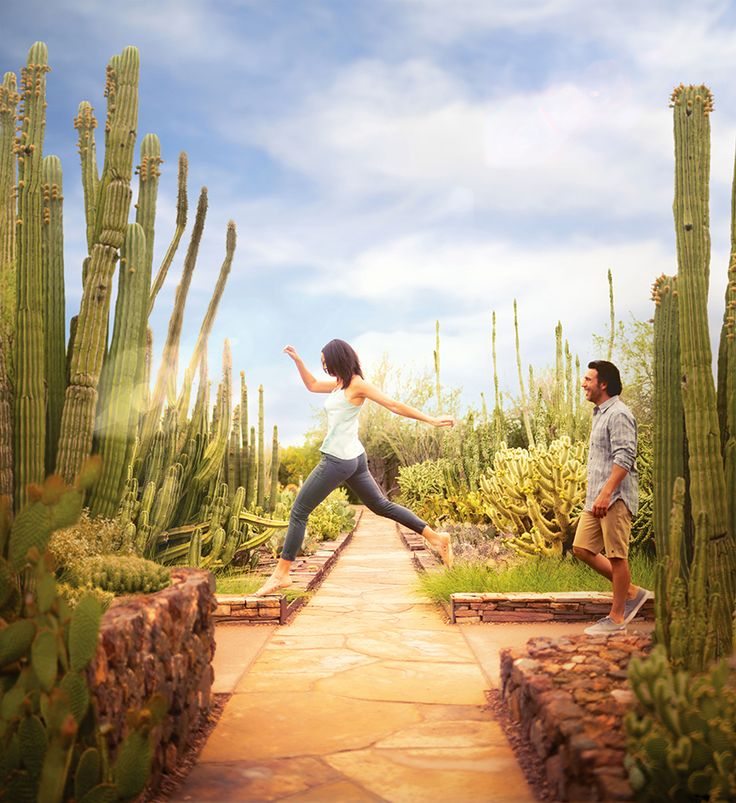 Top 10 things to do and see in Phoenix