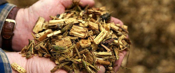 #Biomass Energy Basics:  A #Renewable #Energy Certificate Course