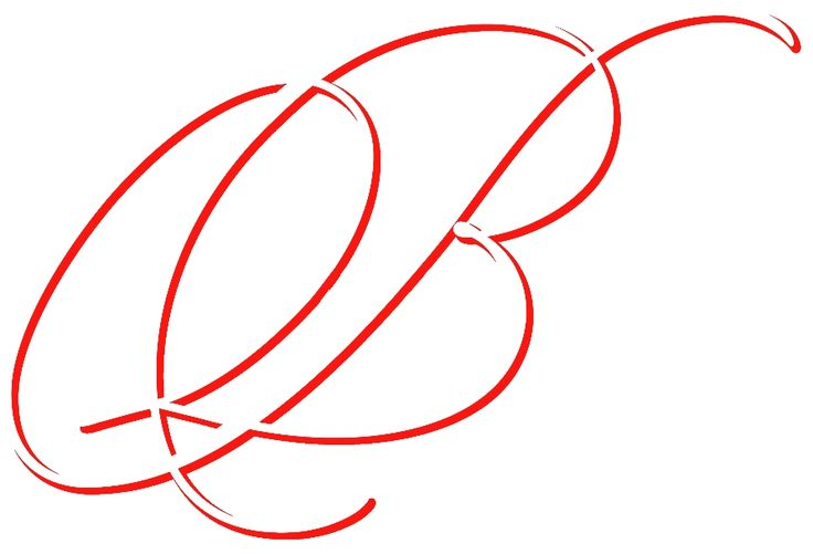 Azienda Agricola BERGONZI CRISTIAN - Logo aziendale