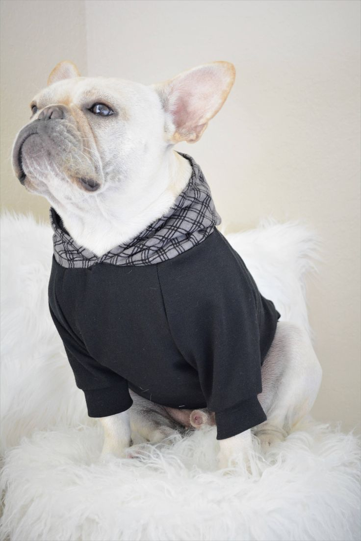 french bulldog onesie the 25 best french bulldog clothes ideas on pinterest 2604