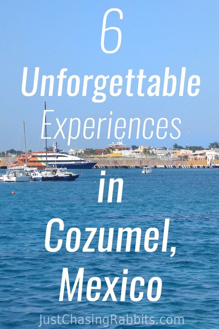 6 Unforgettable Experiences in Cozumel