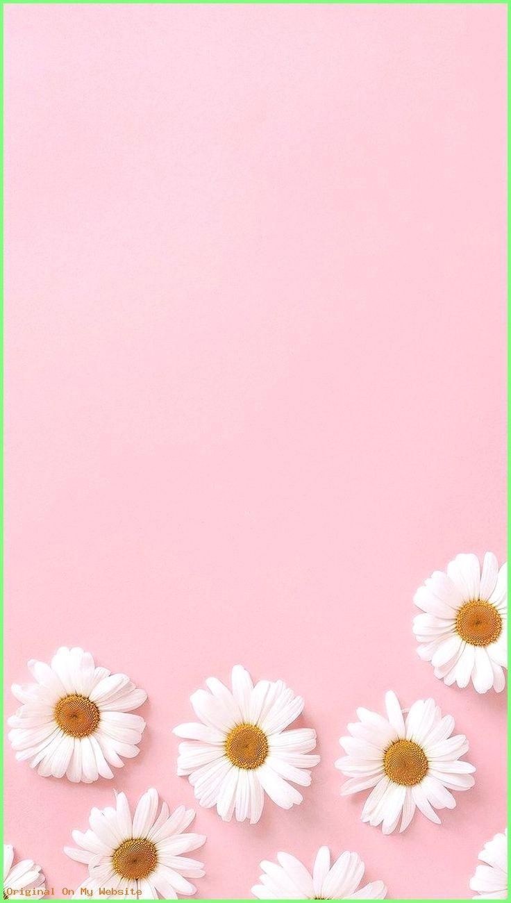 Tumblr Bilder Hintergrund – (notitle) – Lilly – #Lilly #notitle #tumblrbildhintergrund #tum…