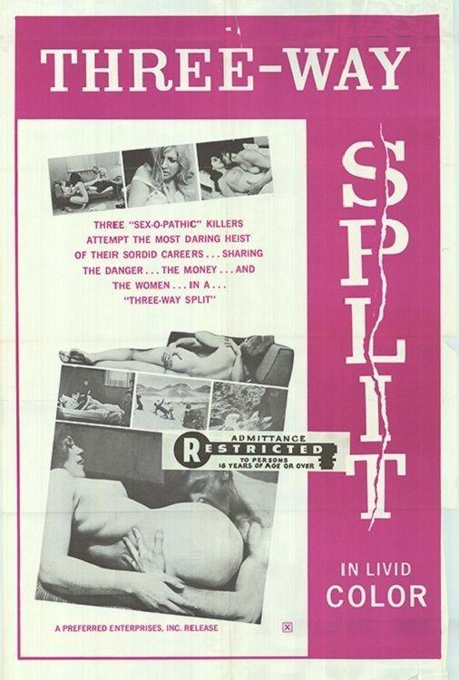 Three-Way Split Movie Poster http://ift.tt/2GuoaNF