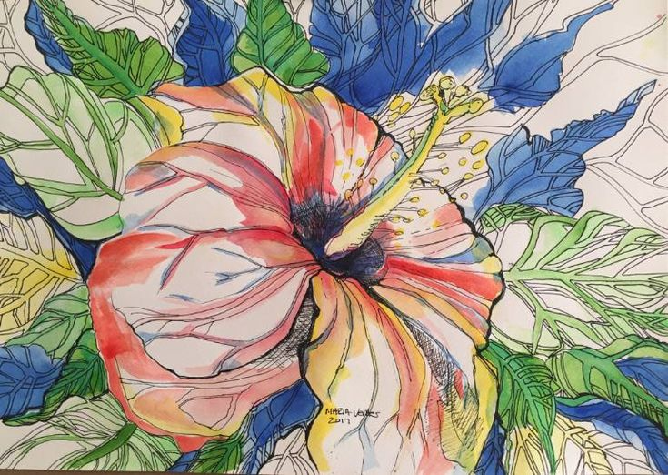 Hibiscus Flower, an Ink Painting on Paper, by Maria Venter from Australia