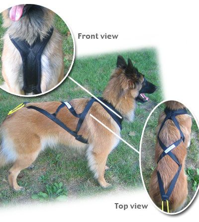 "The X-back harness is the harness most often seen on sled dogs. The large ""X"" evenly distributes pulling weight. The neck is padded with a thick front strap extending between the front legs, designed for hard, comfortable pulling over long distances. The ""X"" should extend to the base of the tail. Consult your dealer for proper fit."