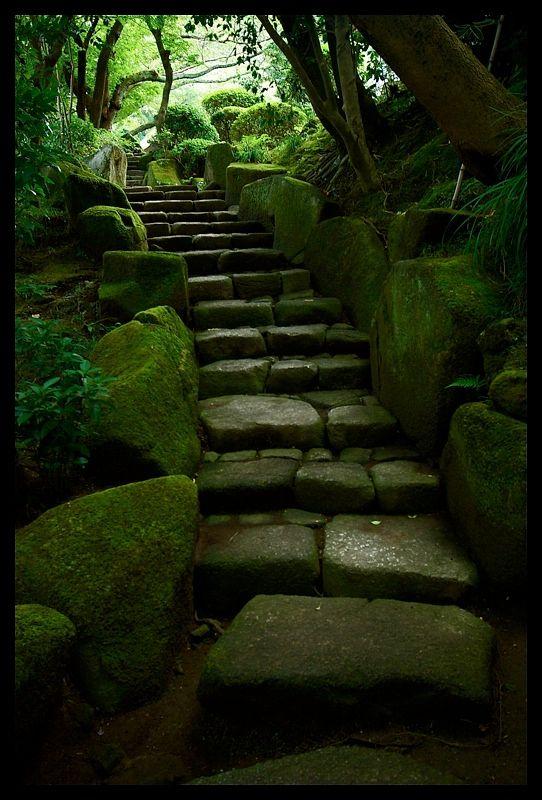 Mossy stairs to Hokoku-ji Temple in Kamakura, Kanagawa, Japan