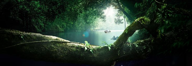 Journey into the world's oldest rainforests, leaving behind only fleeting footprints and a mountain of memories.  Official Website of Tourism Malaysia