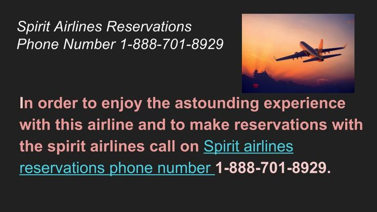 Make spirit reservations at a faster pace as we are offering huge discounts and offers on flight tickets. Contact 1-888-701-8929 for more details.