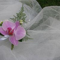 1. бутоньерка из орхидеи