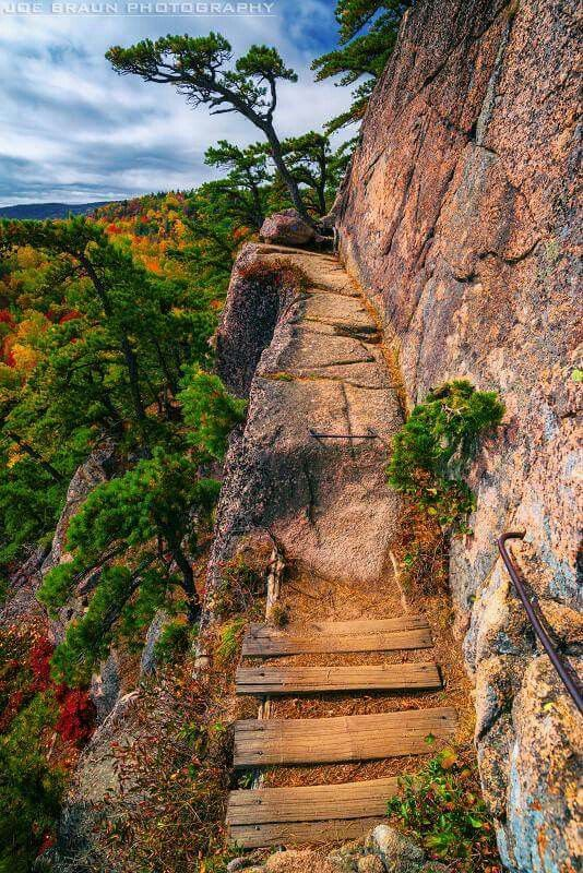 118 best bar harbor images on pinterest arcadia national park beehive trail acadia national park sciox Choice Image