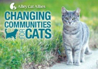 Alley Cat Allies taking their message on the road #cat charities #Alley Cat Allies