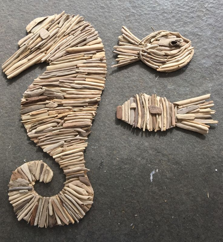 Zeepaard en vissen van drijfhout