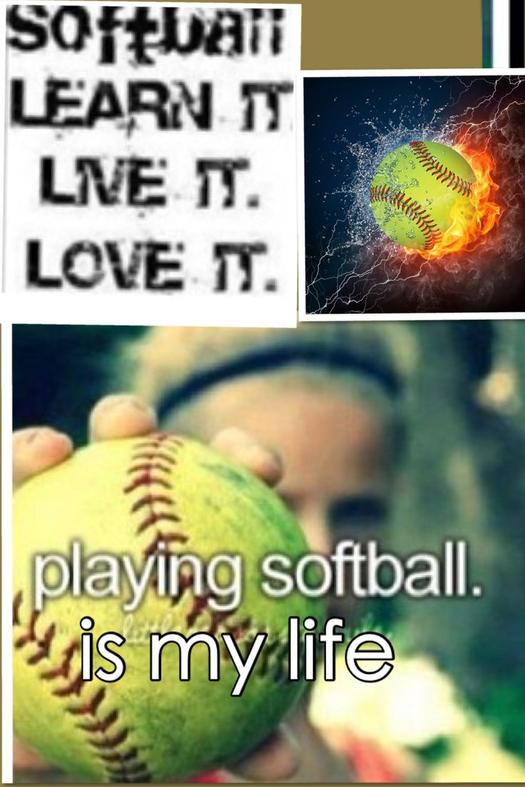 Softball Life Quotes 34 Best Spartan Race Gear Images On Pinterest  Spartan Race
