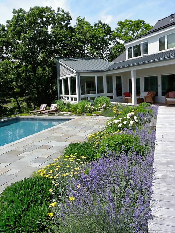 10 best bluestone images on pinterest backyard ideas for Gardens around pools