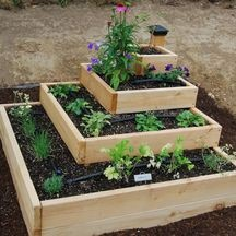 Vegetable and Herb Garden Layout | vegetable garden ideas for small spaces