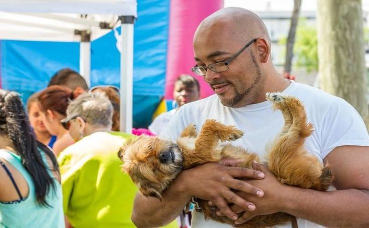 The Bronx's Only No-Kill Shelter Is In Danger Of Closing Due To Lack Of Funding