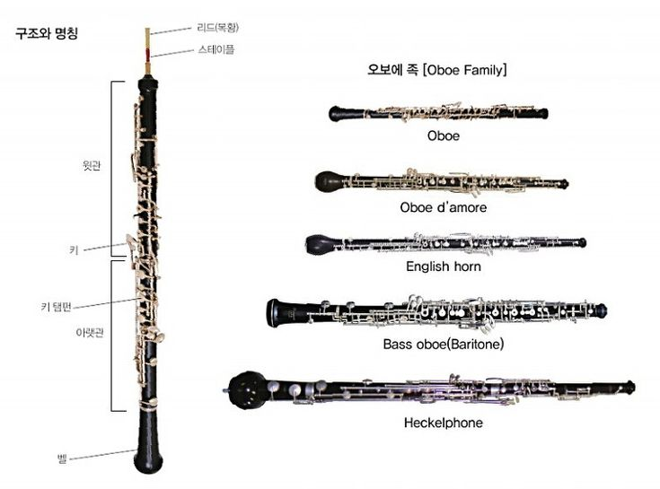 91 Best Oboes Images On Pinterest Oboe Bassoon And