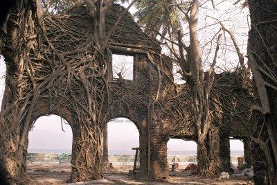 Ruin of abandoned building covered with roots in Ross Island, Port Blair, Andaman, India, Asia Stock Photo - 10839852