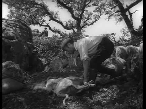 "▶ ""Banditi a Orgosolo"" de Vittorio de Seta, 1961"