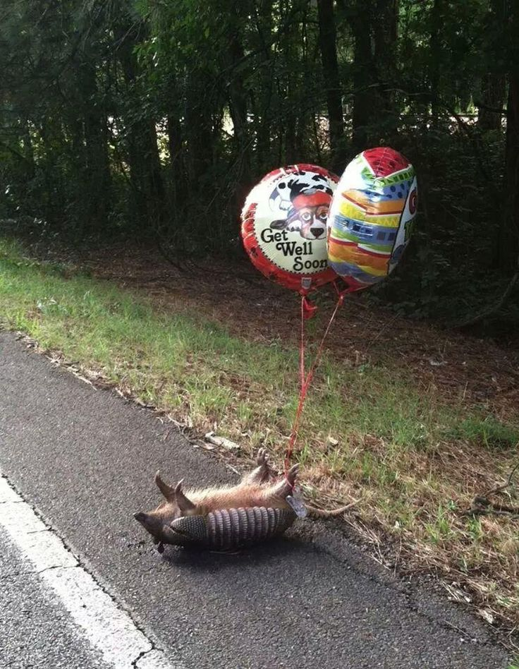 Someone tied get well soon balloons to