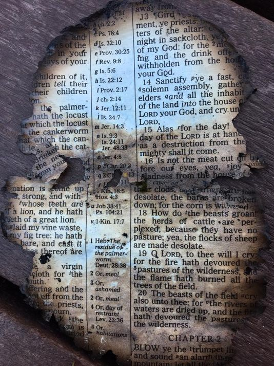 A burnt Bible page at Dollywood, the day after wildfires tore through Sevier County. #Gatlinburg The page, an excerpt from Joel chapter one, reflects the tragedy of the disaster. #Bible