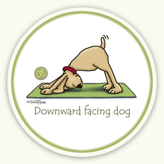 Do yoga enough that I can get my feet down in Down Dog