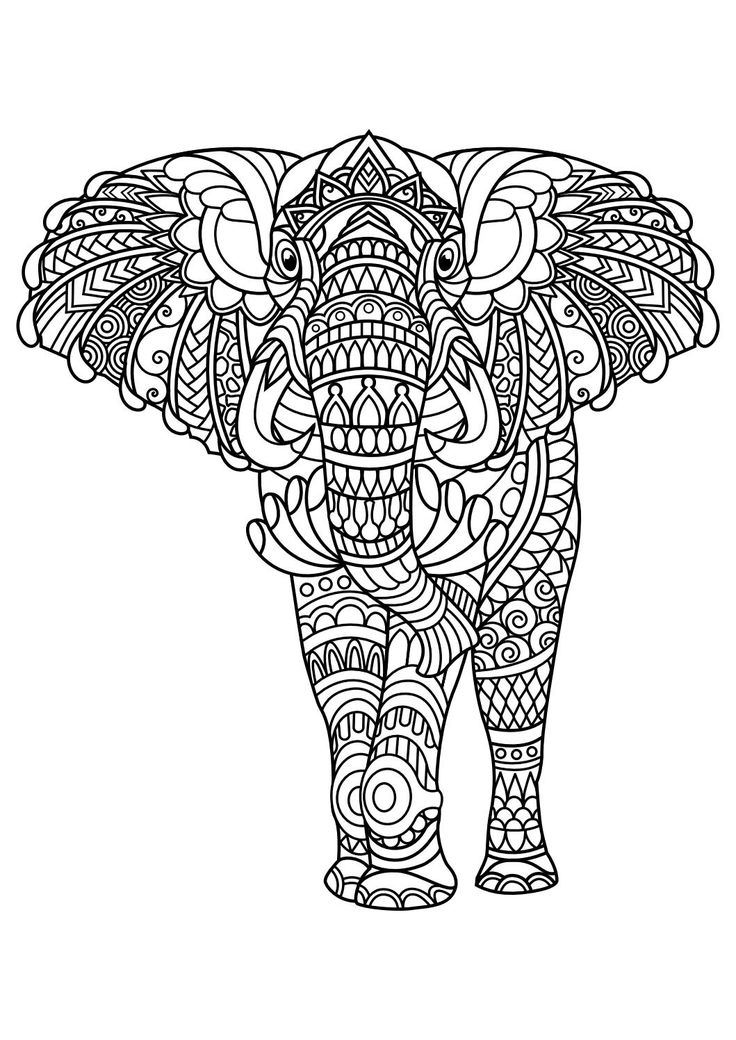 161 best Elephant Coloring Pages for Adults images on Pinterest