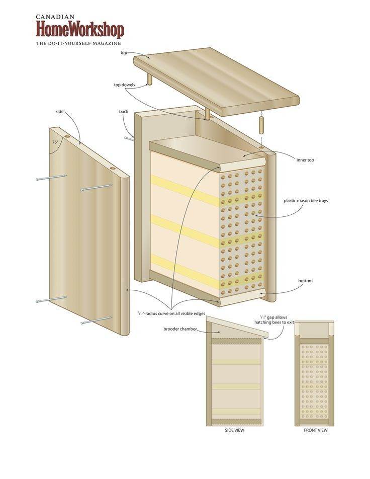 Best 25 bee boxes ideas on pinterest bee hives boxes for Beehive plans blueprints