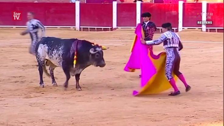 Check this Horrifying Video of How a Matador is killed in a Bullfight ! #Spain #HorrifyingVideo #matador #killed #bullfight Video Courtesy: #TheStarOnline https://youtu.be/2BGonopGo3k