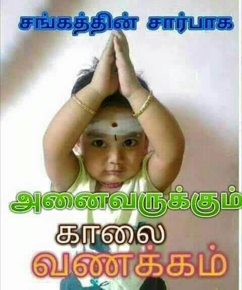 Pin By Kokila Kokila On Tamilan Good Morning Photos Good Morning Messages Cute Good Morning