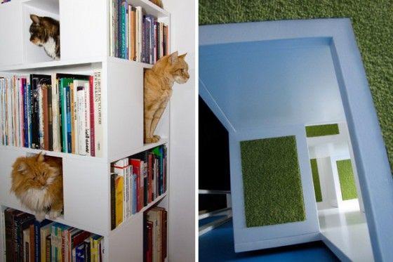 Boekenkast slash kattenspeeltuin | Case-Bookshelf-Houses-Cats-and-Books