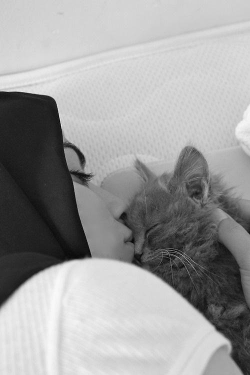 love kitty!!#hijab ❤༺♥༻ *Lovely* ༺♥༻