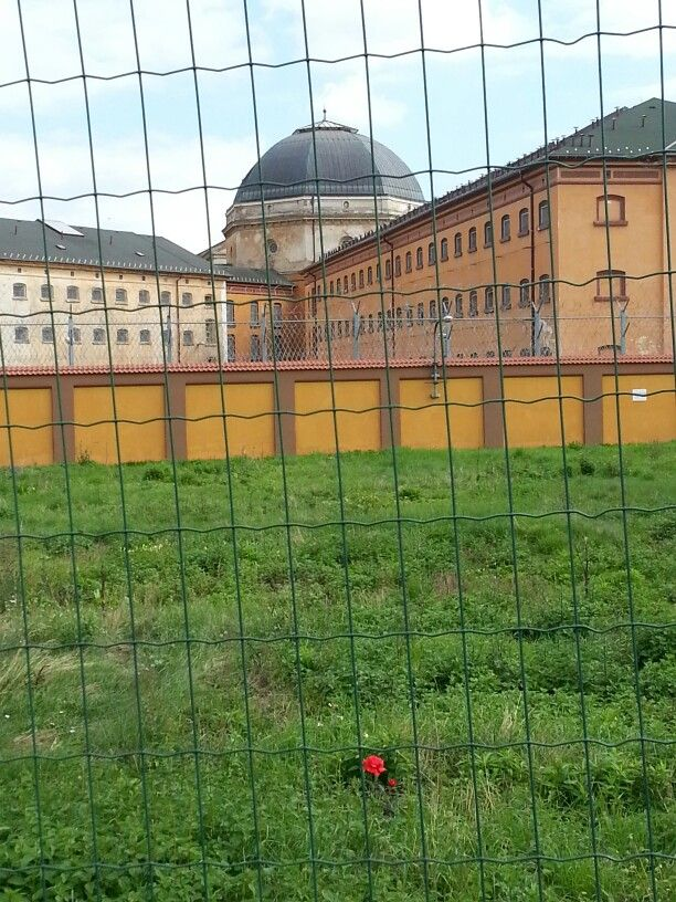The jail and a lonely rose.