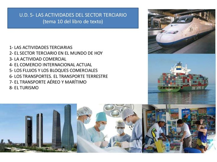 Ud 6 las actividades del sector terciario