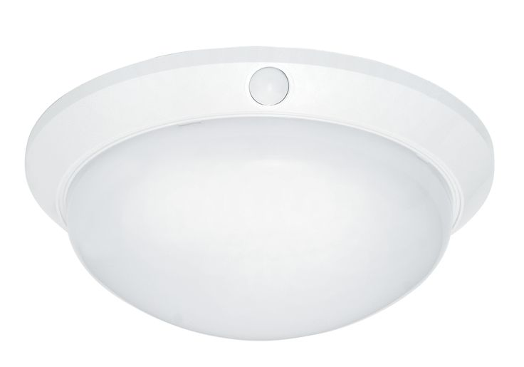 Universal DIY Oyster With Sensor in White