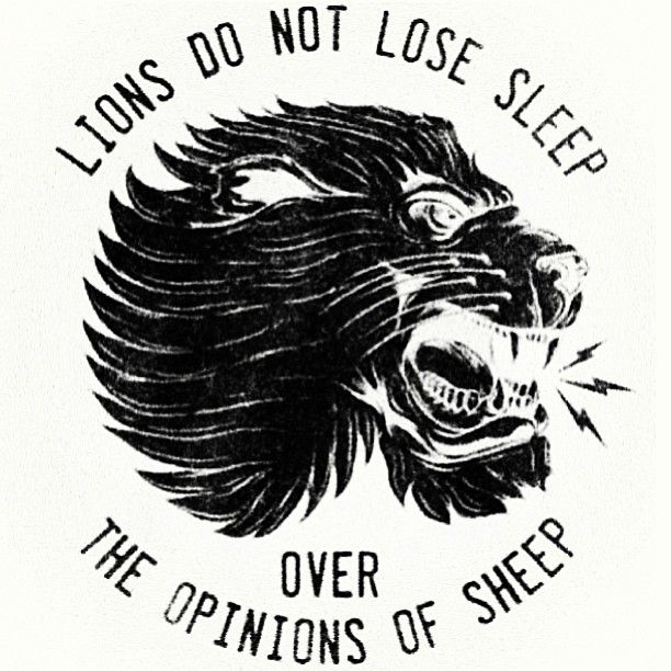 Lions do not lose sleep over the opinions of sheep~