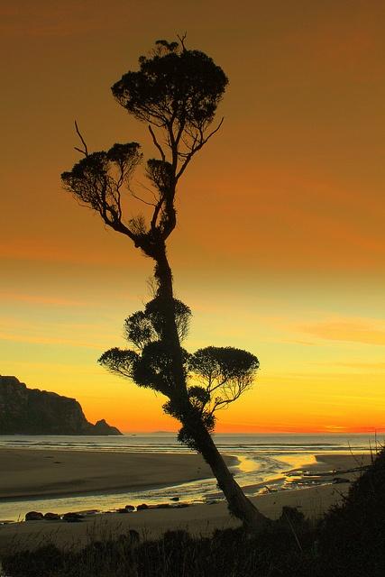 South Coast  Sunrise by rustyalishere, via Flickr