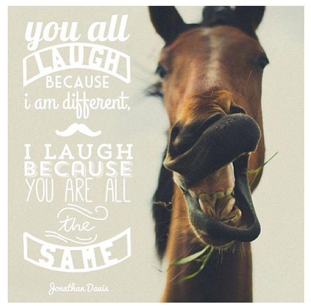 Love this. Horse quote. Laugh.