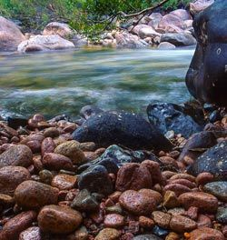 Creekside camping in NQ