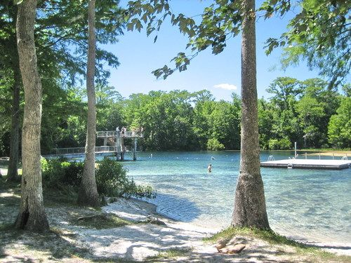 Wakulla Springs, Florida.  Beautiful area!  Fun boat rides, swimming, and dining.
