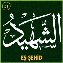 51_es_sehid