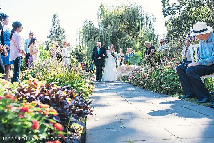 Beacon Hill Park Wedding Photography by Jesse Holland     www.jessehollandphoto.com