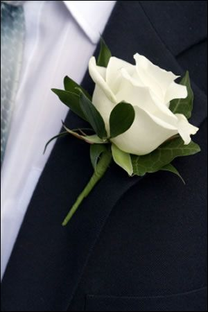 Rose buttonhole with delicate foliage - White flower for Steve, just Ivy/greenery for groomsmen