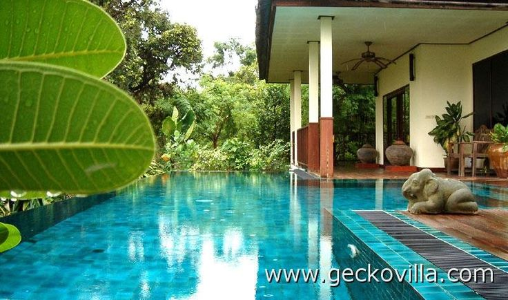The private saltwater  pool at Gecko Villa. To the left are the holiday rental's rice paddies.