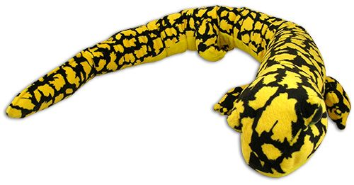 Salamander toy from the Tennessee Aquarium online shop in Chattanooga