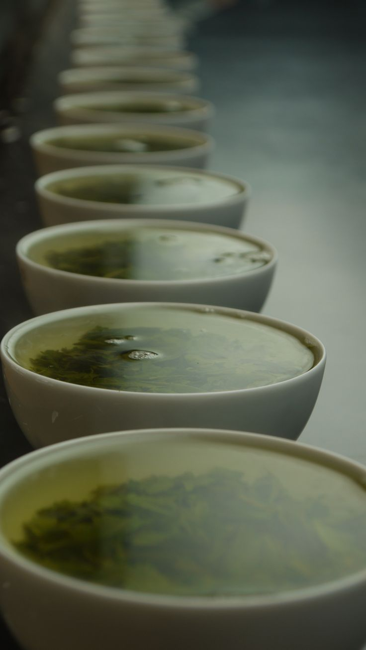 """Difference varieties of teas bred for natural flavor, hardiness, and other factors are taste-tested at the Kumamoto Prefecture Tea Research Center (""""Chaken"""") in the town of Mifune, Kumamoto, Japan."""