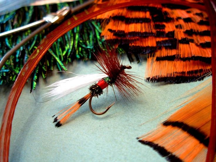 Royal Trude | Fly Tying patterns | Fly dreamers