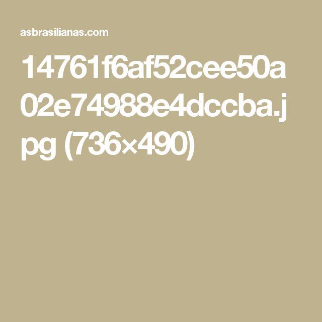 14761f6af52cee50a02e74988e4dccba.jpg (736×490)