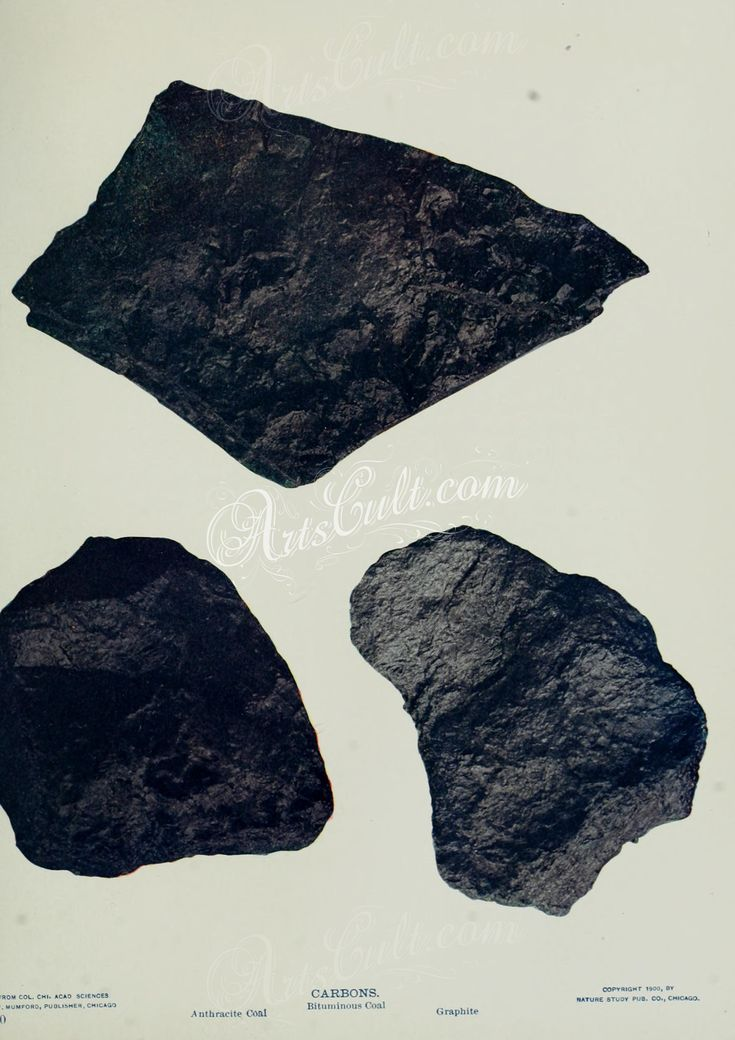 Anthracite Coal, Bituminous Coal, Graphite      ...